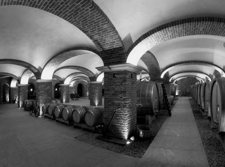 Cantine Povero barrels room